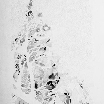 Studio #6 (alla ricerca del grigio), 2014. Matita, gouache, filo da cucire e gesso su tela. 38x31.5cmn