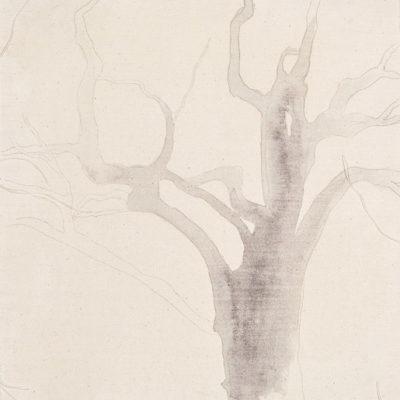 Studio #1, 2003. Matita ed acquarello su tela grezza. 43x37.5cm.