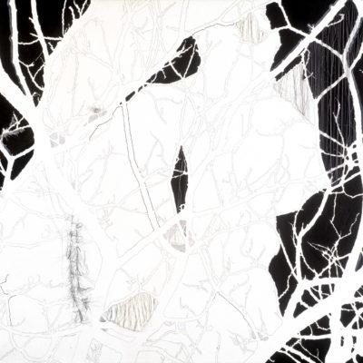 Senza titolo, 2004.  Matita, acquarello, acrilico, filo da cucire e gesso su tela. 100x140cm
